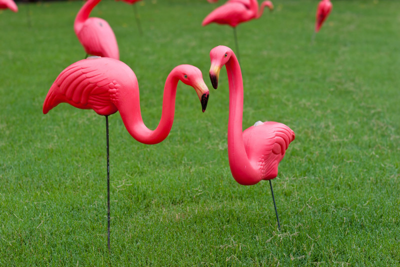 Inventor Of The Plastic Pink Flamingo